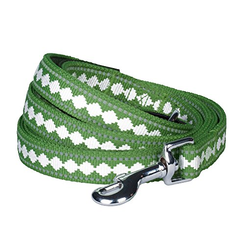 """Blueberry Pet Leashes For Dog 1"""" By 4-Feet Long Jacquard Dog Leash In Moss Green With Neoprene Handle , Large front-144158"""
