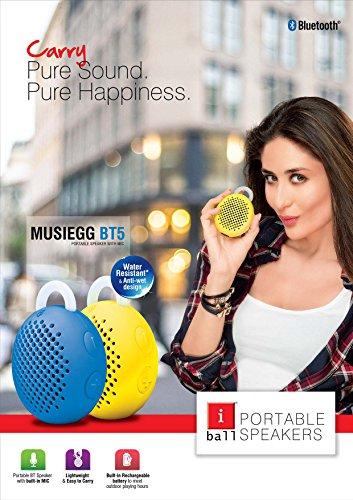 iBall-Musiegg-BT5-Portable-Bluetooth-Speaker