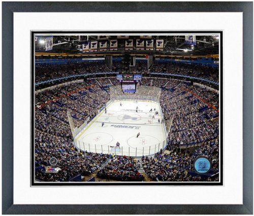 st-louis-blues-scottrade-center-nhl-arena-photo-size-125-x-155-framed