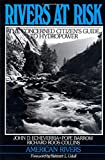 img - for Rivers at Risk: Concerned Citizen's Guide To Hydropower book / textbook / text book