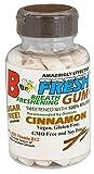 B-Fresh Cinnamon Flavor Gum, 100 Sugar Free Pieces