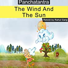The Wind and the Sun Audiobook by Rahul Garg Narrated by David Van Der Molen