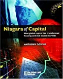 img - for Niagara of Capital: How Global Capital Has Transformed Housing and Real Estate Markets book / textbook / text book