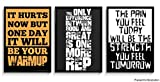 alterEgo Set of 3 Gym Motivational Posters
