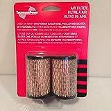 New Genuine OEM Tecumseh 2-pack Air Filters 35066 / 740095