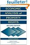 Economic Analysis of Property Rights