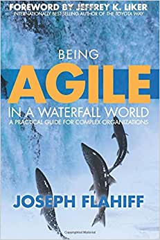 Being Agile In A Waterfall World: A Practical Guide For Complex Organizations