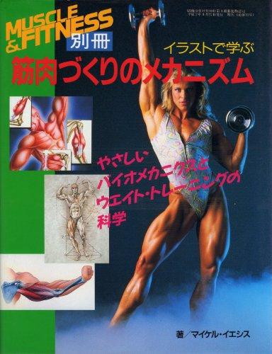 イラストで学ぶ筋肉づくりのメカニズム