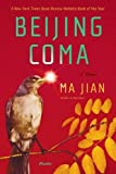img - for Beijing Coma: A Novel book / textbook / text book