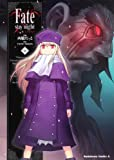 Fate/stay night (13) (角川コミックス・エース 150-14)