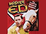 Mister Ed: Clint Eastwood Meets Mr. Ed