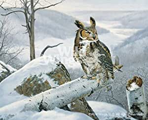 Amazon.com - Master of The Valley Great Horned Owl by Marc Hanson