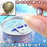 自分で本物の真珠を取り出そう♪真珠缶パール・真珠採集キット(単品)