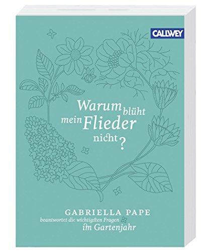 Einfamilienhausmietvertrag Mietvertrag Von Haus Grund: Warum Blüht Mein Flieder Nicht?