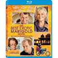 The Best Exotic Marigold Hotel / Benvenue au Marigold Hotel (Indian Palace) [Blu-ray] (Bilingual)