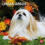 Lhasa Apsos 2012 Wall Calendar