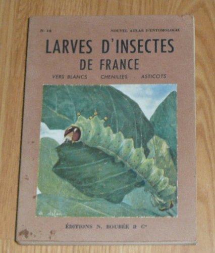 renaud-paulian-atlas-des-larves-dinsectes-de-france-vers-blancs-chenilles-asticots-aquarelles-et-des