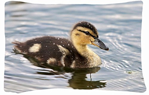 Microfiber Peach Queen Size Decorative Pillowcase -Animals Duckling Fluffy Feathers Drops Water