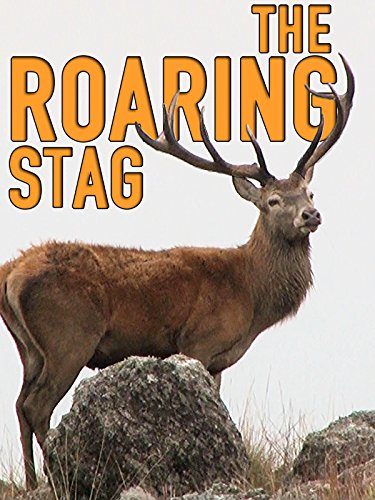 Clip: The Roaring Stag