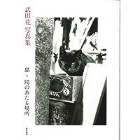猫・陽のあたる場所—武田花写真集
