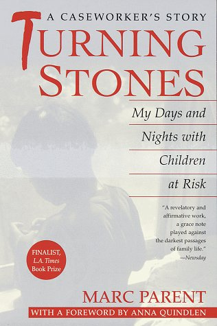 Turning Stones: My Days and Nights with Children at Risk: A Caseworker