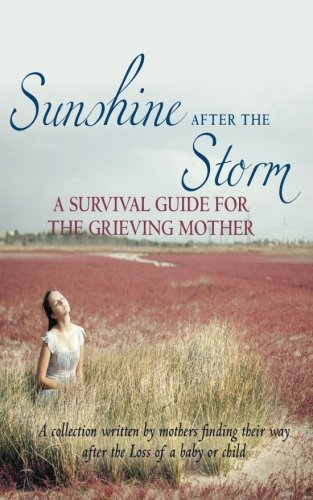 sunshine-after-the-storm-a-survival-guide-for-the-grieving-mother