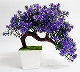 #7: HYPERBOLE Wild Plant Artificial Plant with Pot(27cm)