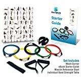 Resistance Bands Set - Exercise Bands - CrossFit - Yoga - p90x - Build Stamina and Lean Muscle - Ideal for Arm, Leg and Core Workouts - Low-Impact on Joints - Excellent for Rehabilitation Programs - 11 Piece Set: Five Hypoallergenic Latex Bands, Two High-Density Foam Handles, Door Anchor, Two Ankle Straps and a Mesh Carrier for Maximum Breathability - FREE Instructional Handbook Included - Our High-Quality Products are 100% Guaranteed
