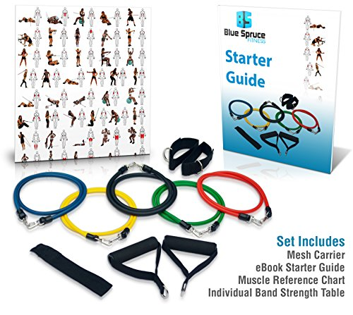 Resistance Bands Set - Exercise Bands - CrossFit - Yoga - p90x - Build Stamina and Lean Muscle - Ideal for Arm, Leg and Core Workouts - Low-Impact on Joints - Excellent for Rehabilitation Programs - 11 Piece Set: Five Hypoallergenic Latex Bands, Two H...