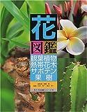 花図鑑 観葉植物・熱帯花木・サボテン・果樹 (草土花図鑑シリーズ)