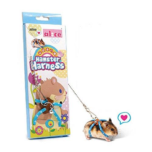 Popular Adventure Land Hamster Gerbil Pet Cage Playhouse 51Q1ajPUUNL