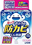 ルック おふろの防カビくん煙剤 5g 【HTRC4.1】