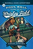 img - for Foul Ball Frame-Up at Wrigley Field: The Baseball Geeks Adventures Book 2 book / textbook / text book