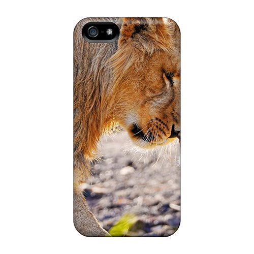New Arrival Lion Cub Rubbing Noses Fvxrm2570Hcaqj Case Cover/ 5/5S Iphone Case