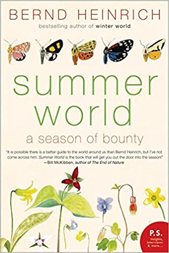 Summer World: A Season of Bounty price comparison at Flipkart, Amazon, Crossword, Uread, Bookadda, Landmark, Homeshop18