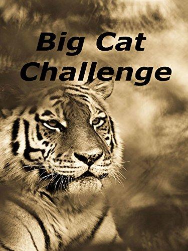 Big Cat Challenge