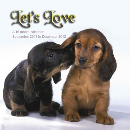 Let Love 2012 Calendar CAD03