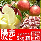 福島県産 甘いりんご (陽光) 5kg箱 (13~18玉入) ランキングお取り寄せ
