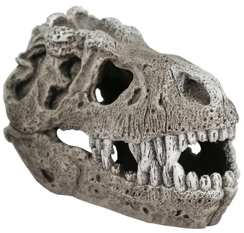 Exotic Environments T-Rex Skull Aquarium Ornament , Small, 5-Inch by 3-Inch by 3-Inch