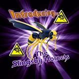 Introducing The Fantastic Sounds Of... The Slingsby Hornets