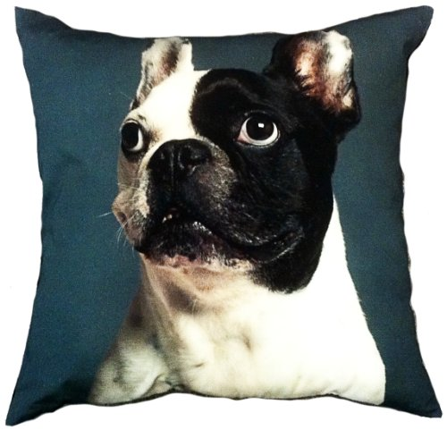 """Artiwa Dog Cotton & Soft Velvet Sofa Couch Throw Decorative Pillow Cover 18""""X18"""" (Pc55A05) front-155697"""