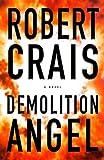 Demolition Angel image