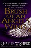 Brush of an Angel's Wing (0892839147) by Shedd, Charlie W.