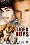 img - for Tiger Boys book / textbook / text book