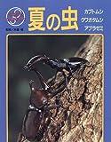 夏の虫—カブトムシ・クワガタムシ・アブラゼミ (なるほどウォッチング)
