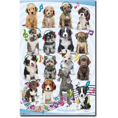 (22X34) Keith Kimberlin Puppy Headphones Animal Poster