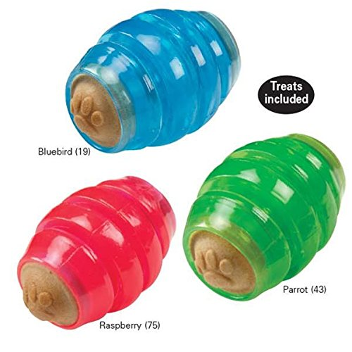 Grriggles Fundamentals Munch-A-Football Chew Toy, Parrot Green