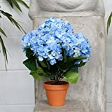 Artificial Potted Plant - Blue Hydrangea with Foliage 36cm