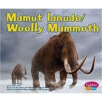 Mamut Lanudo/Wooly Mammoth (Dinosaurios y Animales Prehistsricos / Dinosaurs and Prehist)
