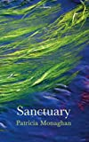 Sanctuary (Salmon Poetry)
